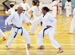 karate2017_03.jpg