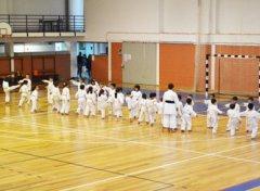 karate2017_04.jpg