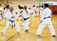 karate2017_06.jpg